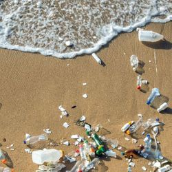 Scientists Call for Global Action Plan to Protect Oceans