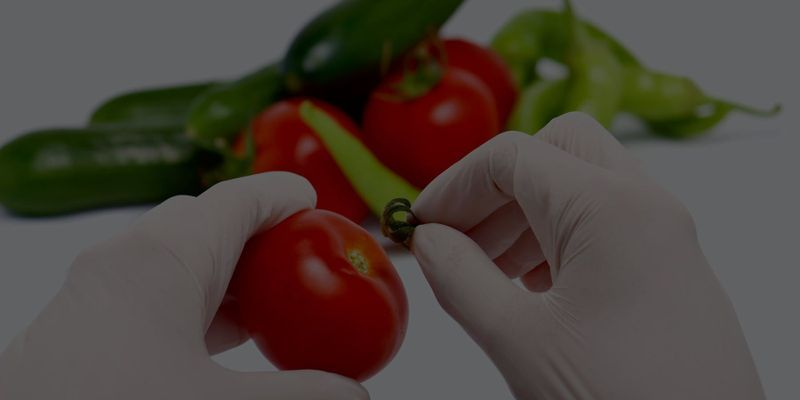 Food Safety and Quality Control