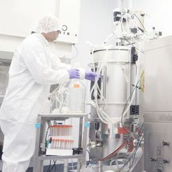 A Brief Overview of Bioprocessing