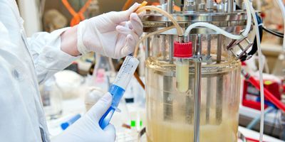 Automation Will Dominate Single-Use Bioprocessing within the Next Five Years