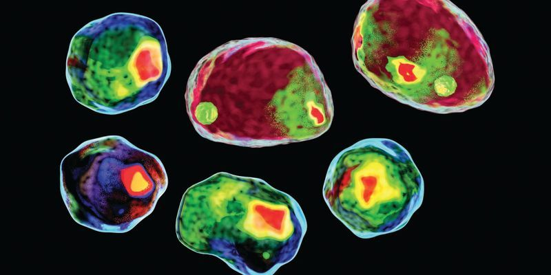 Accelerating Flow Cytometry's Potential for Drug Screening