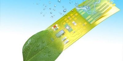 Researchers Create Intelligent Electronic Microsystems from Green Material