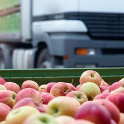 Food Systems Offer Huge Opportunities to Cut Emissions, Study Finds