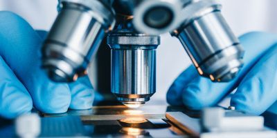 Machine Learning Reduces Microscope Data Processing Time