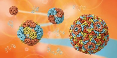 Scientists Uncover the Mysteries of How Viruses Evolved
