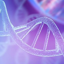 New Discovery Shows Human Cells Can Write RNA Sequences into DNA
