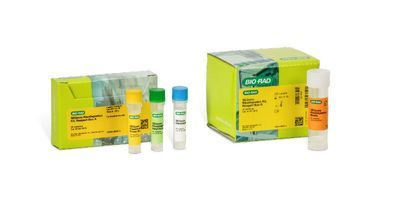 Bio-Rad Launches the SEQuoia RiboDepletion Kit for Next-Generation Sequencing