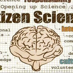 Making Citizen Science Inclusive Will Require More Than Rebranding