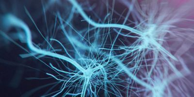 Psychedelic Spurs Growth of Neural Connections Lost in Depression
