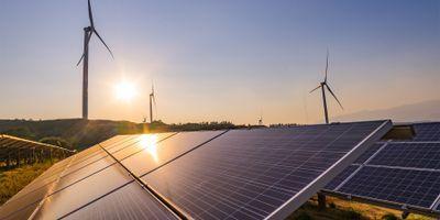 Study Evaluates Biodiversity Impacts of Alternative Energy Strategies