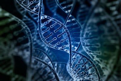 Standardization of Clinical PGx Testing