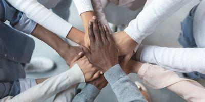 Studies Examine Different Understandings, Varieties of Diversity