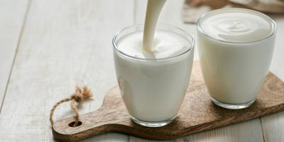 Making Progress in Developing Probiotic Beverages without Animal Protein