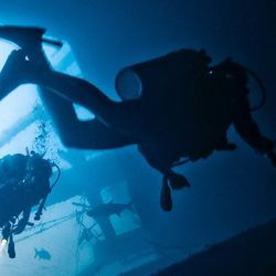 Computer Science, Environmental Health Experts Team Up to Protect US Navy Divers with AI