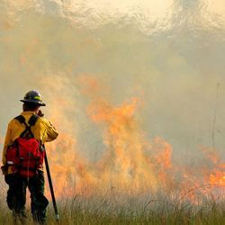 Wildfire Smoke May Lead to Less Rain in the Western US