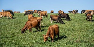 NASA at Your Table: Where Food Meets Methane