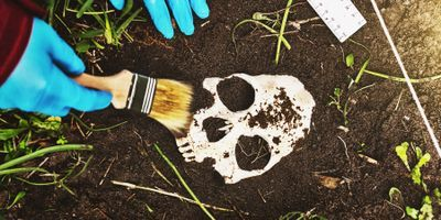 Some Forensic Anthropology May Mistakenly Support False Ideas around Race