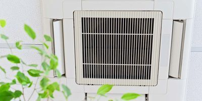 Office Air Quality May Affect Employees' Cognition, Productivity