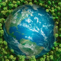 Utilitarian Approach to Global Climate Policy Leads to Better Outcomes