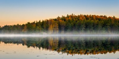 Photo of a lake near a forest