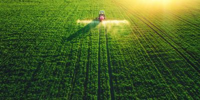 Yeast and Bacteria Together Biosynthesize Plant Hormones for Weed Control
