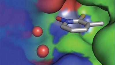 Fragment-Based Methods for Drug Screening