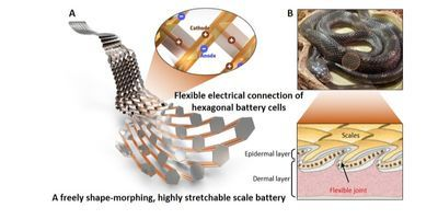 Flexible, Stretchable Battery Capable of Moving Smoothly Like Snake Scales