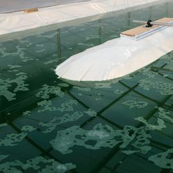 Chemists Develop New Technology That Detects Algae Crop Health