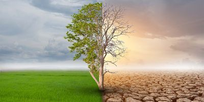 More than 99.9 Percent of Studies Agree: Humans Caused Climate Change