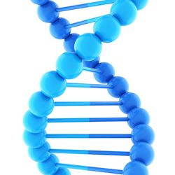 So-Called Junk DNA Plays Critical Role in Mammalian Development