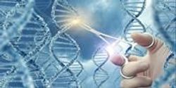 Thoughts from a Medical Ethicist on Gene Editing Babies