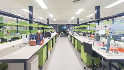 Choosing Laboratory Casework Materials