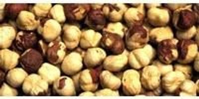 Hazelnuts Improve Older Adults' Micronutrient Levels