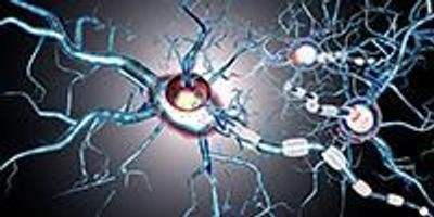 Environmental Factors May Trigger Onset of Multiple Sclerosis