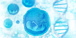 New Technique Isolates Placental Cells for Non-Invasive Genetic Testing