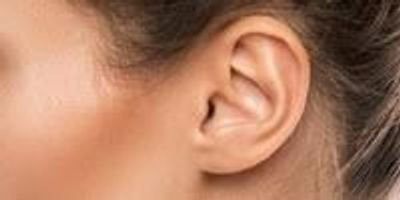 Discovery of New Neurons in the Inner Ear Can Lead to New Therapies for Hearing Disorders