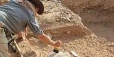 Laziness Helped Lead to Extinction of Homo Erectus