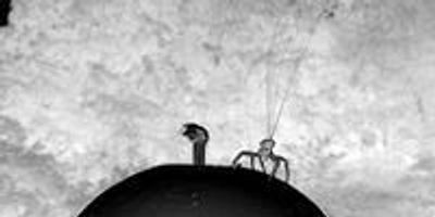 Flying Spiders Sense Meteorological Conditions, Use Nanoscale Fibers to Float on the Wind