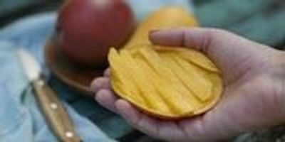 Mangoes Helped Improve Cardiovascular and Gut Health in Women