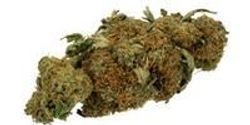Researchers Develop Faster Test for Cannabis Quality