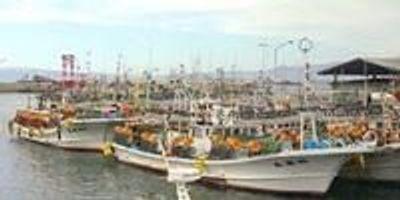 Mercury Rising: Are the Fish We Eat Toxic?