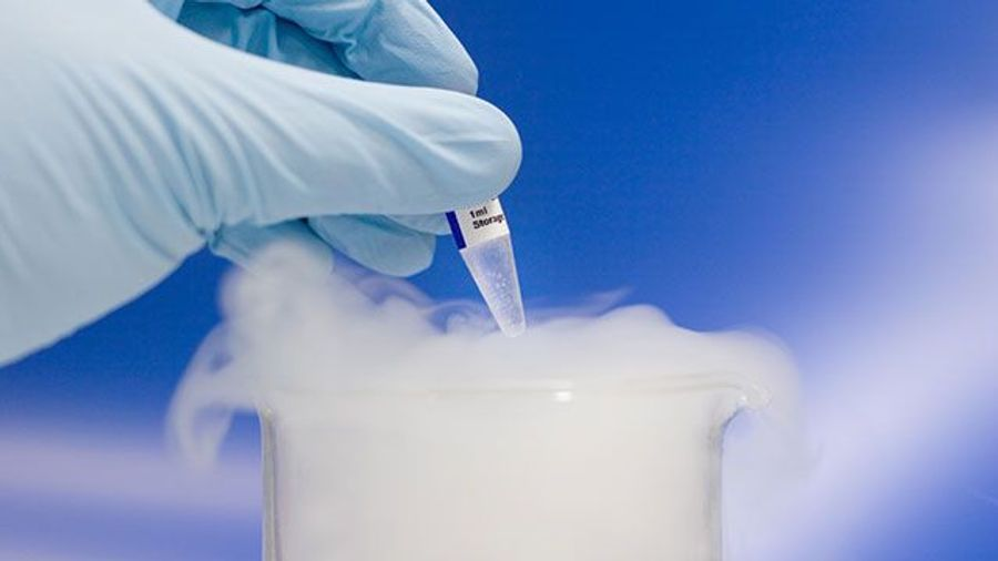 Selecting the Best Cold Storage Solution for Your Lab