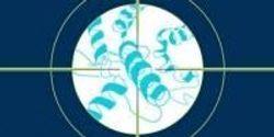 Protein Analysis Enables Precise Drug Targeting