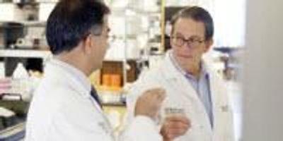 CRISPR Enhances Cancer Immunotherapy
