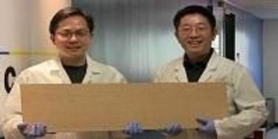 Super Wood Could Replace Steel