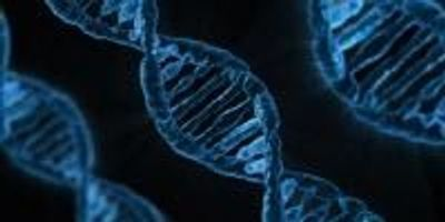 Study Reveals How the Most Common DNA Mutation Happens