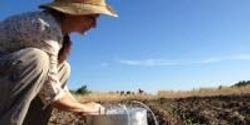 Research Finding Ways to Inject Manure, Preserve Environment