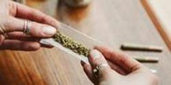 Australian Women Turning to Cannabis to Treat Endometriosis Symptoms