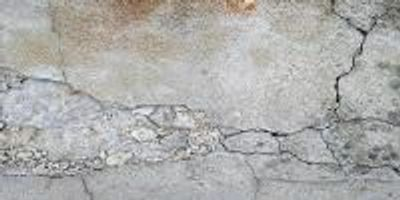 Self-Healing Fungi Concrete Could Provide Sustainable Solution to Crumbling Infrastructure