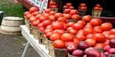 Diet Rich in Apples and Tomatoes May Help Repair Lungs of Ex-Smokers